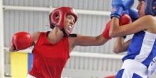 liga-nacional-de-boxeo-marco-el-camino-a-nuevos-peleadores-criollos